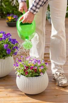 Jardinier homme arrosant des fleurs d'alto dans le jardin