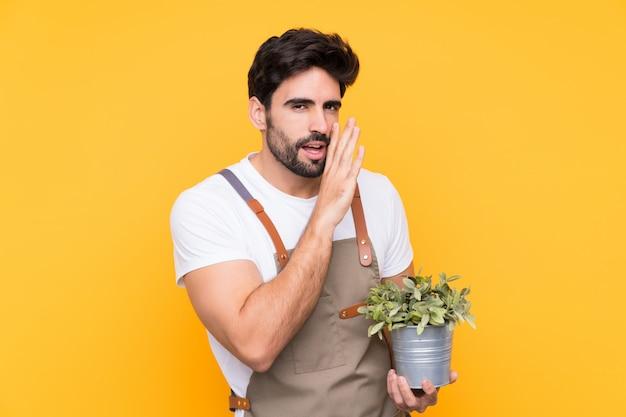 Jardinier homme avec barbe sur mur jaune isolé chuchoter quelque chose