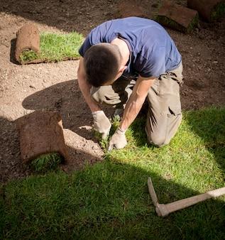 Jardinier installant des gazons en herbe naturelle créant un beau champ de pelouse