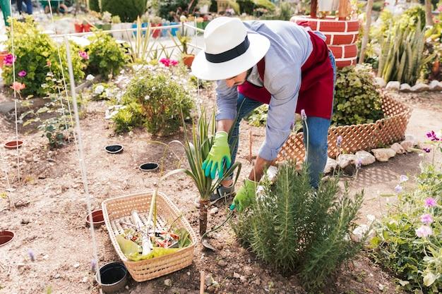Un jardinier mâle plantant les plantes avec houe dans le jardin