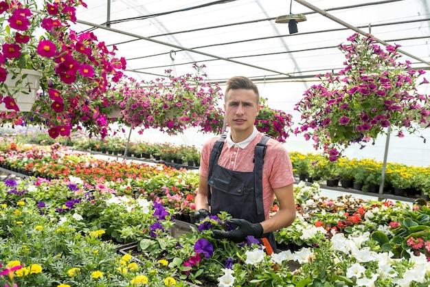 Le jardinier mâle prend soin des plantes tout en jardinant des fleurs en serre. mode de vie