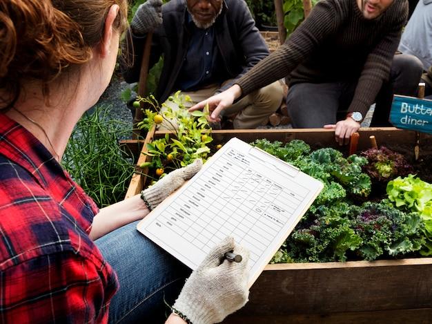 Jardinier passe-temps agriculture arrière-cour vert