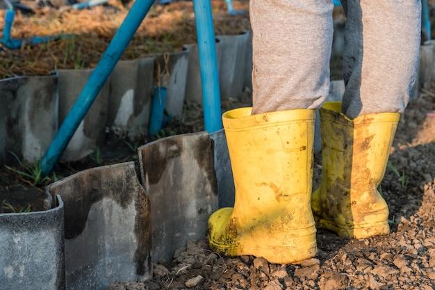 Le jardinier portant des bottes en caoutchouc jaune protège la tache boueuse