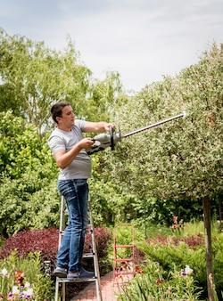 Un jardinier taille des arbres avec un taille-haie