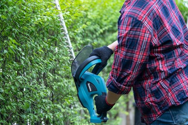 Jardinier tenant un taille-haie électrique pour couper la cime des arbres dans le jardin. hobby plantation jardin familial.