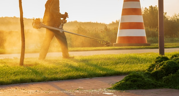 Le jardinier tond la pelouse avec une tondeuse à gazon tôt le matin à l'aube.