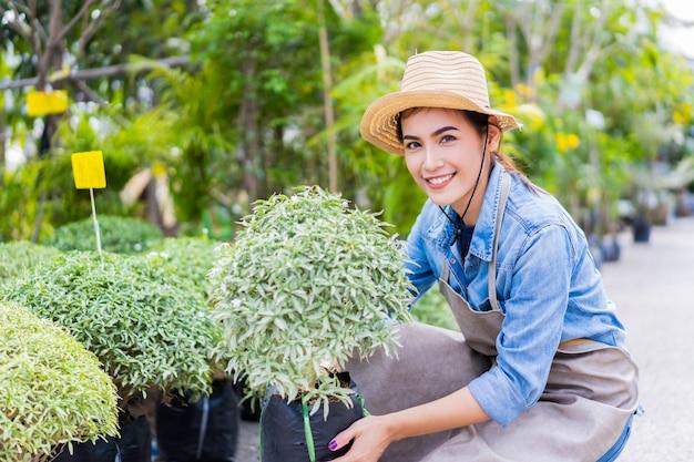 Jardinier vend des arbres sur le marché.