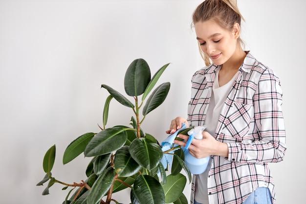 Une jardinière prudente essuyant la poussière des feuilles de plantes d'intérieur en prenant soin du jardinage à la maison