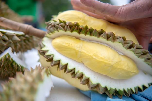 Les jardiniers couvrent le durian. le jaune est beau à manger.