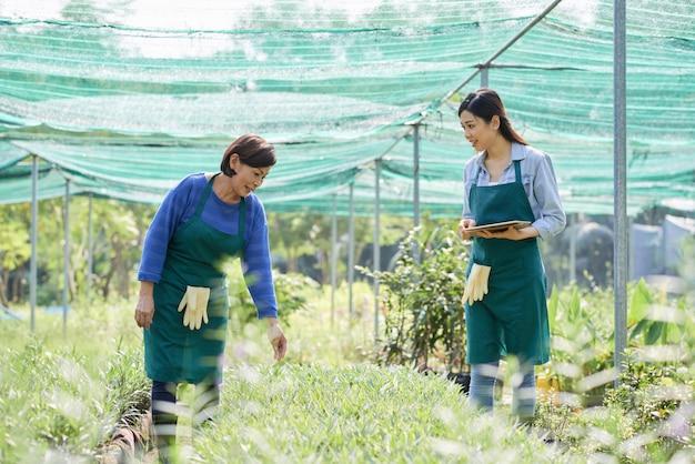 Jardiniers travaillant en équipe