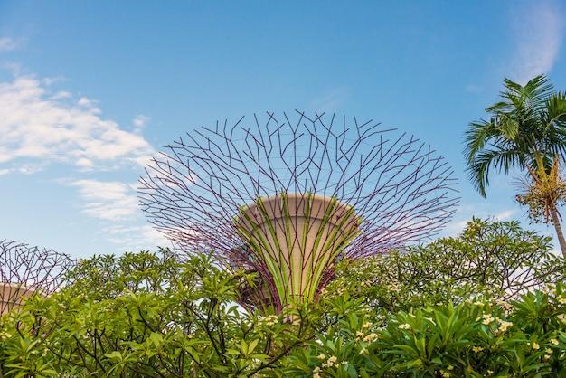 Jardins de la baie, singapour