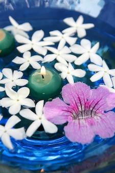Jasmin et asarina rose, bougies et eau bleue