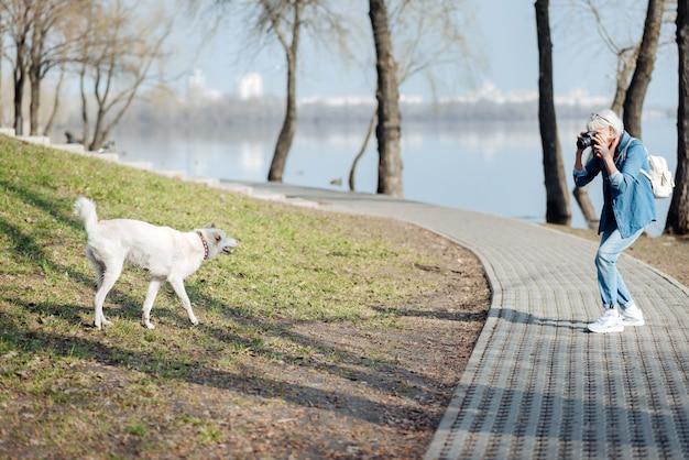 Je suis photographe. heureux femme mûre à prendre des photos d'un chien en marchant dans le parc