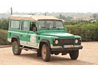 Jeep vert