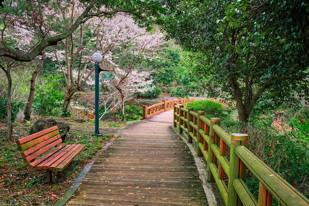 Jeju olle trail, jeju island, corée du sud