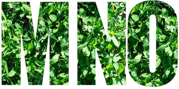 Jeu de lettres de l'alphabet anglais. lettres mno d'herbe verte isolée sur fond blanc. éléments pour votre conception.