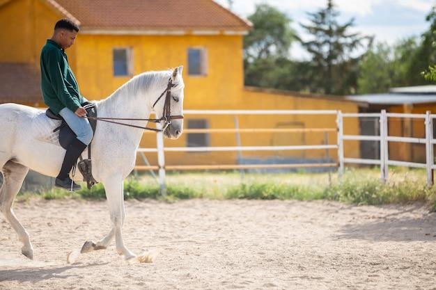 Jeune, afro-américain, dans, tenue décontractée, cheval blanc, sur, sablonneux, sur, ranch