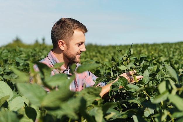 Jeune agriculteur dans les champs de soja