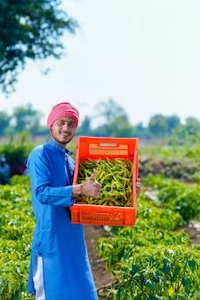 Jeune agriculteur indien la collecte de froid vert dans des caisses en plastique au champ frisquet vert