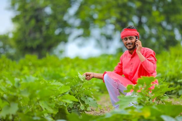 Jeune agriculteur indien parlant au téléphone mobile au champ d'aubergines vertes