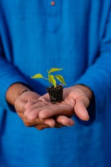 Jeune agriculteur indien tenant une petite récolte de piment dans la main à la maison verte