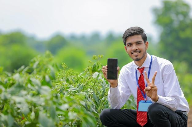 Jeune agronome indien montrant un téléphone intelligent avec agriculteur au champ de piment vert