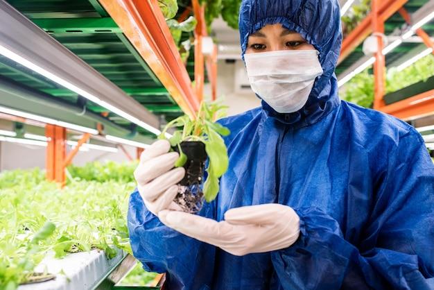 Jeune chercheur d'origine asiatique tenant petit pot avec semis d'une nouvelle sorte de plante horticole en serre