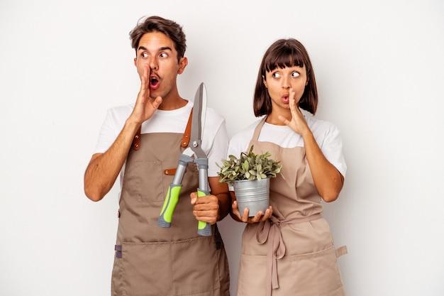 Jeune couple de jardiniers métis isolé sur fond blanc dit une nouvelle secrète de freinage à chaud et regarde de côté