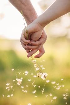 Jeune couple, tenant mains, à, bouquet de pissenlits dans le parc de l'été