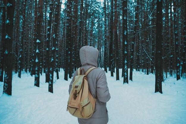 Jeune, debout, hiver, neigeux, forêt