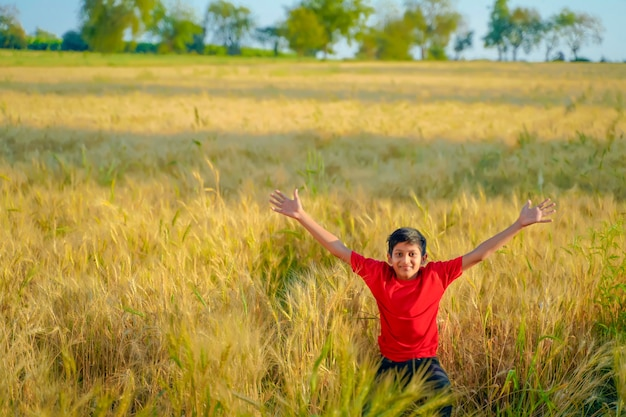 Jeune enfant indien jouant au champ de blé, inde rurale