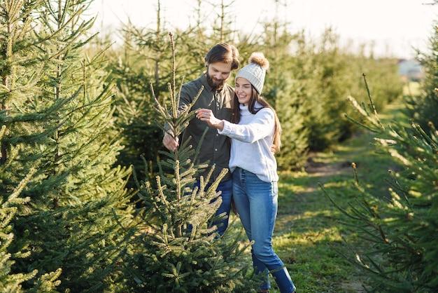 Jeune famille heureuse en choisissant l'arbre de noël à la plantation, préparer les vacances d'hiver.