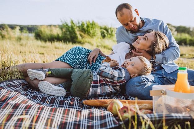 Jeune famille avec petit fils ayant pique-nique dans le parc