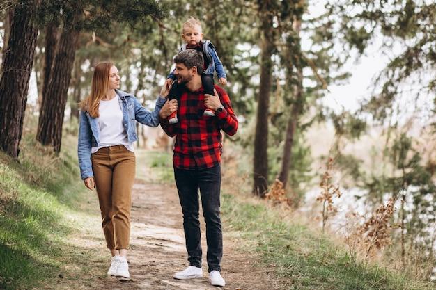 Jeune famille, à, petit fils, dans, forêt
