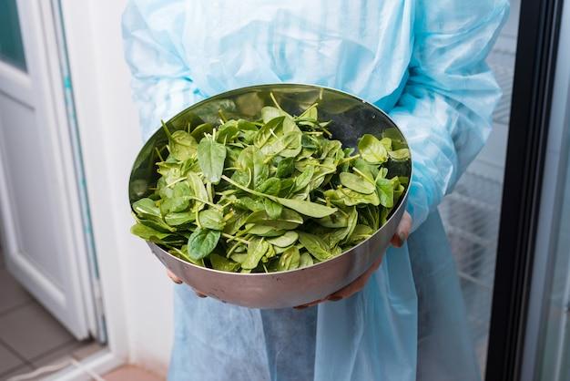 Jeune femelle tient un bol d'épinards lavés frais verts.