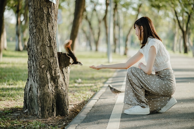 Jeune femme asiatique en vêtements blancs nourrir les noix d'un écureuil debout sur l'arbre trouvé accidentellement en se promenant dans le parc avec un pigeon à côté d'elle