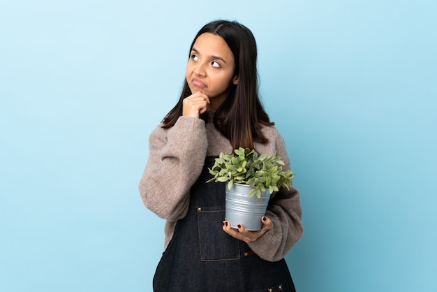 Jeune femme brune de race mixte tenant une plante sur le mur bleu ayant des doutes et avec l'expression du visage confus