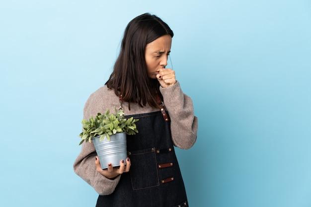 Jeune femme brune de race mixte tenant une plante sur un mur bleu isolé toussant beaucoup