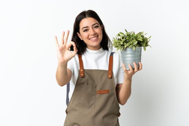 Jeune femme caucasienne tenant une plante isolée sur fond blanc montrant un signe ok avec les doigts