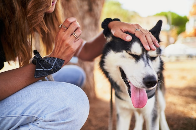 Jeune femme élégante caressant son husky sibérien dans le parc