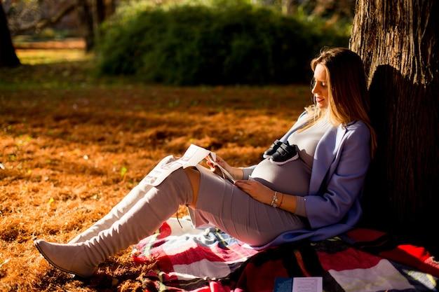 Jeune femme enceinte assis sous un arbre dans le parc en automne et en regardant un instantané de l'échographie