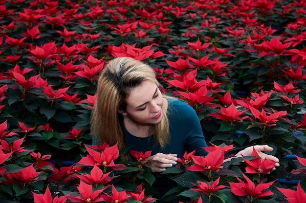 Jeune femme parmi de nombreux gros poinsettias rouges choisit l'une de ces fleurs dans une pépinière