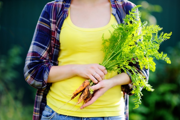 Jeune femme pendant les vendanges. gros plan, photo, frais, bio, carottes biologiques, main fille