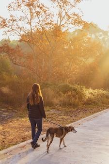 Jeune femme promenant son chien dans la nature avec les rayons du soleil du matin, lueur chaude et longues ombres