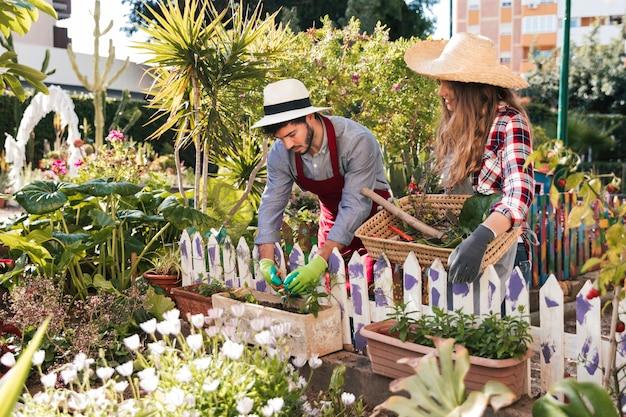 Jeune femme, regarder, jardinier mâle, élagage, plante, dans jardin