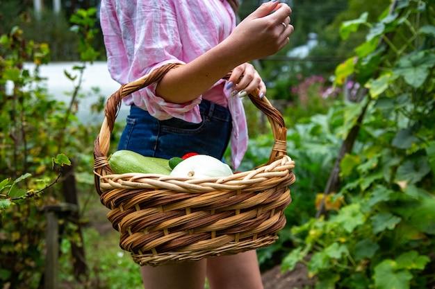 Une jeune femme sans visage tient un panier avec la récolte de ses fruits et légumes frais de la ferme