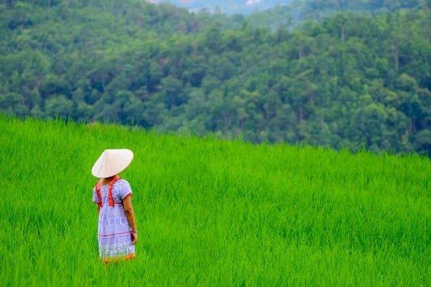 Jeune femme se tient debout et regarde la rizière voyageur avec un chapeau profitant d'une belle vue sur la rizière