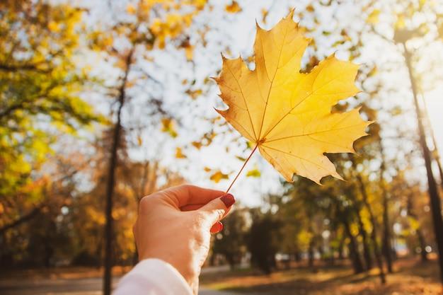 Une jeune femme tient une feuille d'érable d'automne jaune dans un parc.