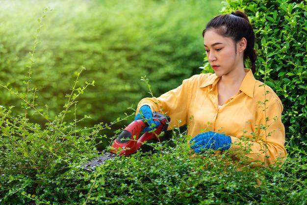 Jeune femme utilisant l'usine de coupe et de taille de haie électrique sans fil dans le jardin à la maison