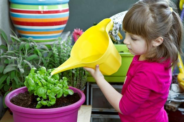 Jeune fille, arrosage, basilic, plante, sourire